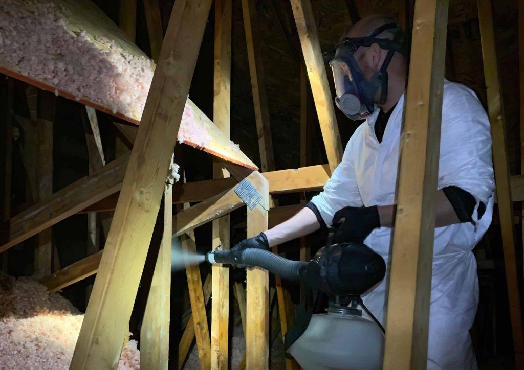 Attic Disinfect Deodorize Service Photo Of A Person Sanitizing an attic