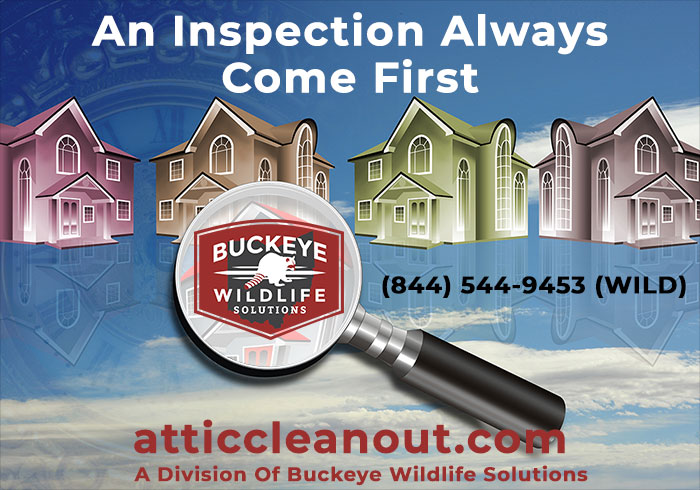 inspection comes first graphic